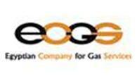 Egyptian Company for Gas Services